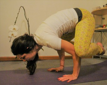 Crow pose is a good arm balance for ab strength!